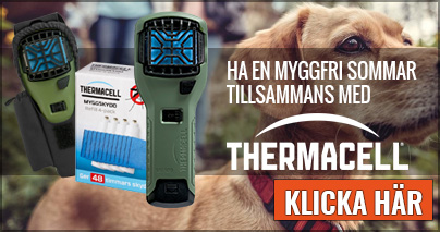 Thermacell 2019 Hund