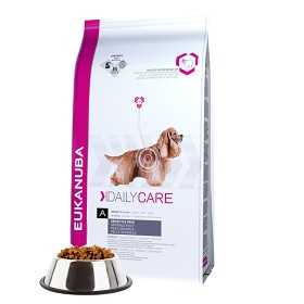 Eukanuba Daily Care Sensitive Skin 16,5kg