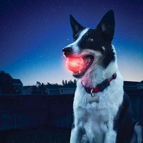 Nite Ize Glowstreak LED boll + Spotlit Halsbandsljus