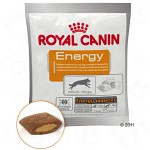 Royal Canin Energy 30-pack