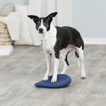 Trixie Dog Activity Balansdyna