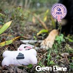 Green Bone-hållare Pink Edition