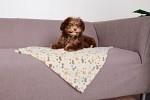 Trixie Hundfilt Lingo 75×50 cm Vit/Beige