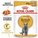 Royal Canin British Shorthair Adult Våtfoder 12 x 85gr