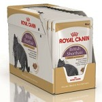 Royal Canin British Shorthair Adult WET 12x85gr