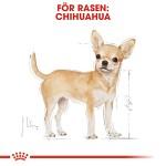 Royal Canin Chihuahua Adult Våtfoder 12 x 85gr