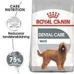 Royal Canin Dental Care Adult Maxi 9kg