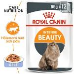 Royal Canin Intense Beauty Jelly Våtfoder 12 x 85gr