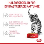 Royal Canin Kitten Sterilised Jelly Våtfoder 12x85gr