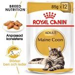 Royal Canin Maine Coon Adult Våtfoder 12 x 85gr