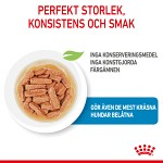 Royal Canin Medium Puppy Våtfoder 10x140g