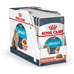 Royal Canin Urinary Care Gravy Våtfoder 12 x 85gr
