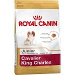 Royal Canin Cavalier King Charles Junior 1,5kg