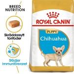Royal Canin Chihuahua Puppy 1,5kg