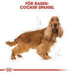 Royal Canin Cocker Spaniel Adult 12kg