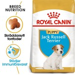 Royal Canin Jack Russell Puppy 1,5kg