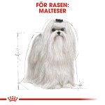 Royal Canin Malteser Adult 1,5kg