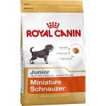 Royal Canin Miniature Schnauzer Junior 1,5kg