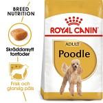 Royal Canin Poodle Adult 7,5kg