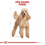 Royal Canin Poodle Adult 7,5kg