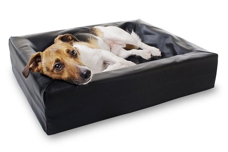 BiaBed Hundbädd Nr 2, 50x60cm