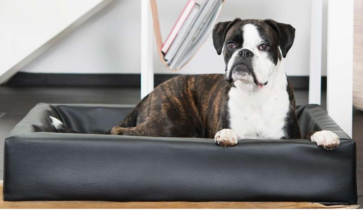 BiaBed Hundbädd Nr 4, 70x85cm