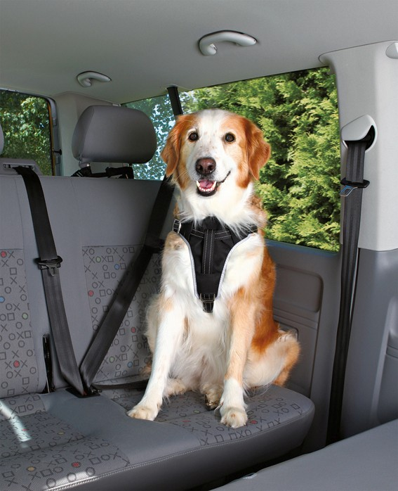 Trixie Bilsele Dog Protect XL