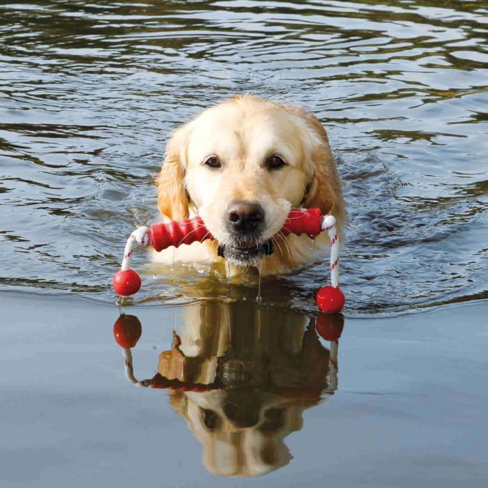 Dog Activity Mot-long, Flytleksak