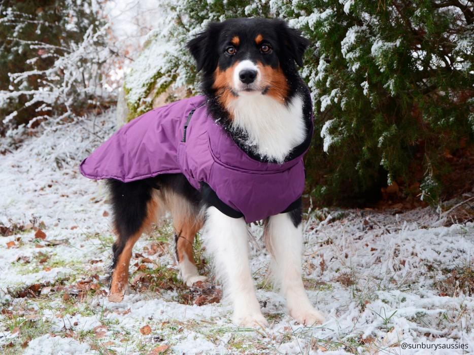 Dogman Vintertäcke Isa, Lila