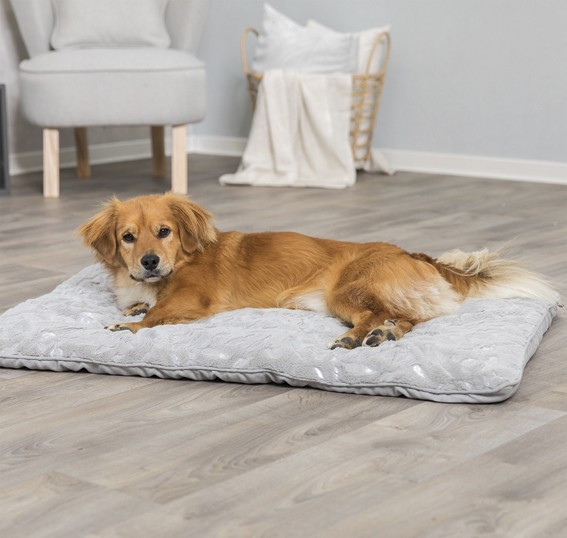 Hunddyna Fjäderdekor Trixie, 100x70cm