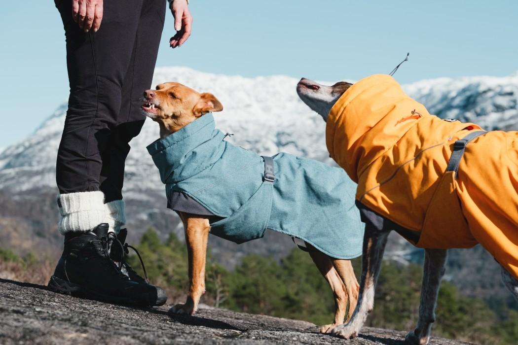 Hurtta Expedition Parka, Björnbär
