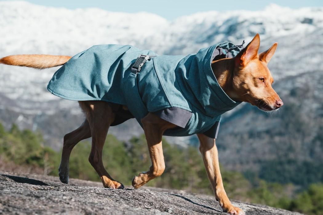 Hurtta Expedition Parka, Blåbär