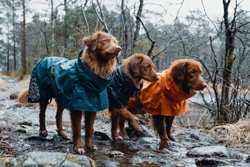 Hurtta Monsoon Coat 60cm