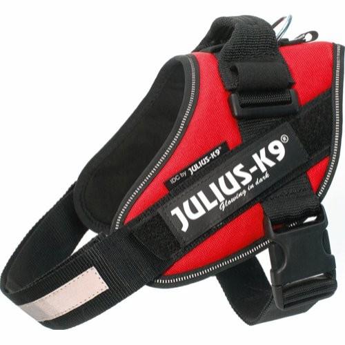 """Julius K9 IDC Sele """"4"""", 110+ cm"""
