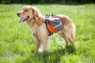 Extreme Backpack Klövjeväska, M
