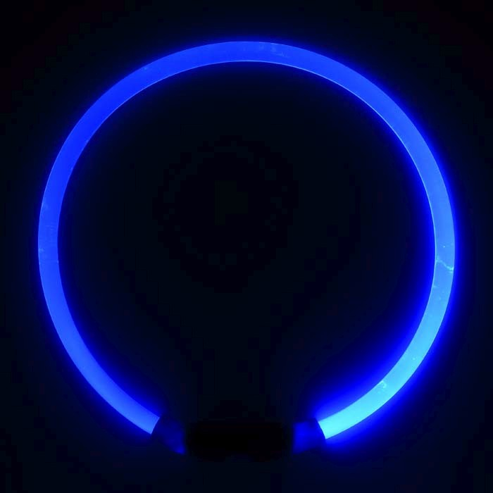 NiteHowl LED säkerhetshalsband