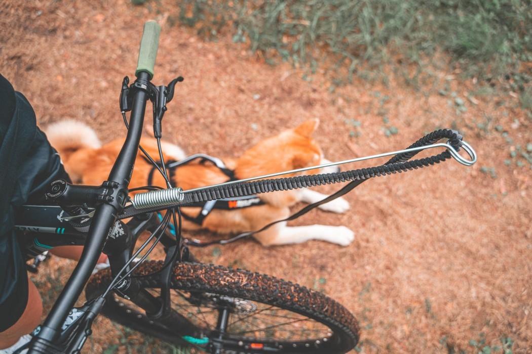Non-Stop Bike Antenna
