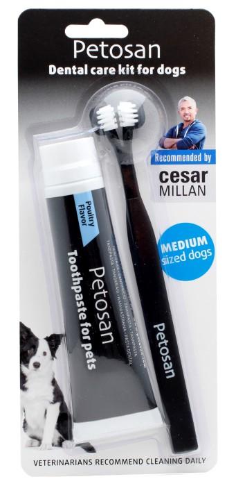 Petosan Dental Kit Medium