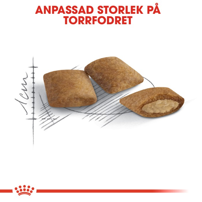 Royal Canin Ageing 12+ 2kg