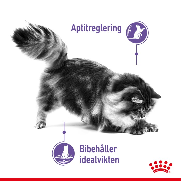 Royal Canin Appetite Control, 3,5kg