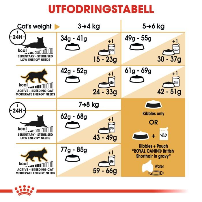 Royal Canin British Shorthair Adult 10kg