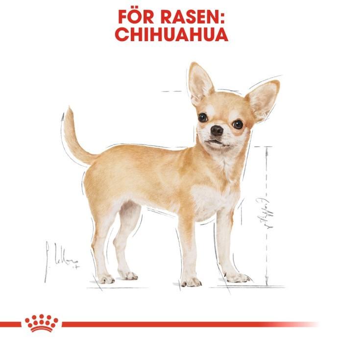 Royal Canin Chihuahua Adult Våtfoder, 12x85g