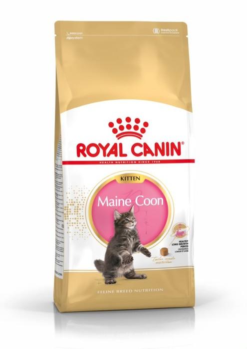 Royal Canin Maine Coon Kitten, 4kg