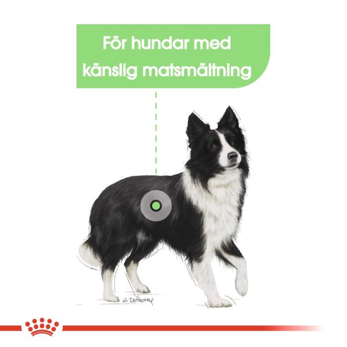 Royal Canin Medium Digestive Care 3kg