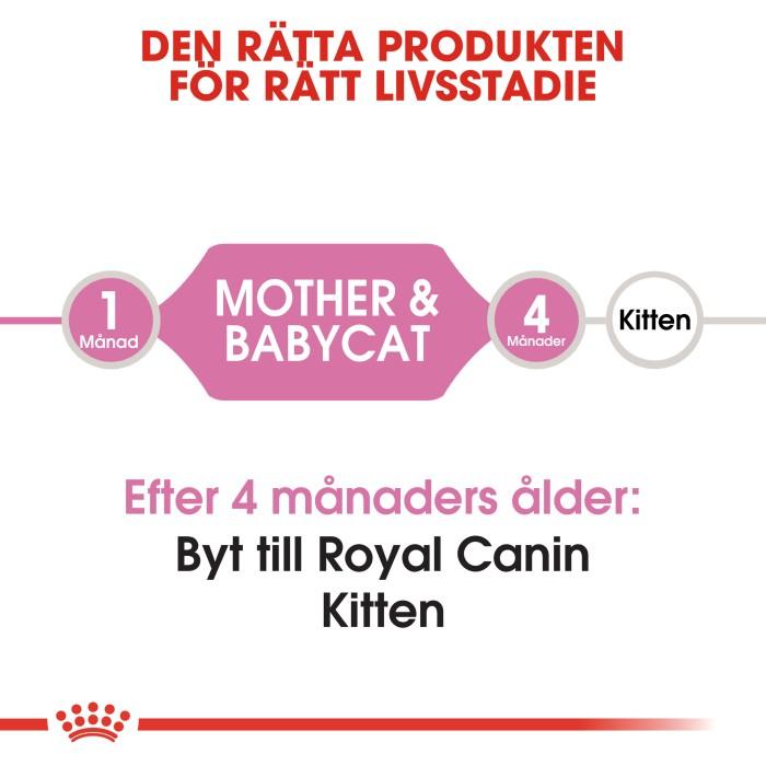 Royal Canin Mother & Babycat 10kg