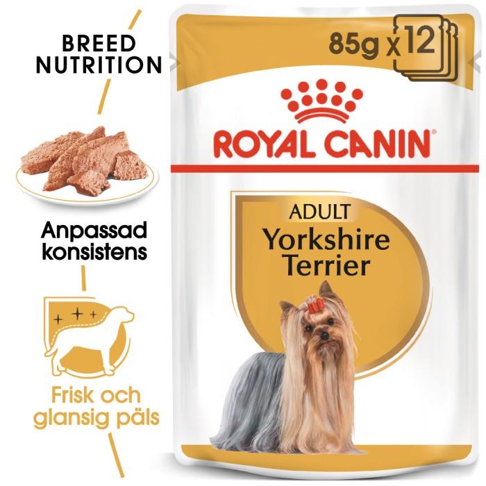 Royal Canin Wet Yorkshireterrier 12 x 85gr