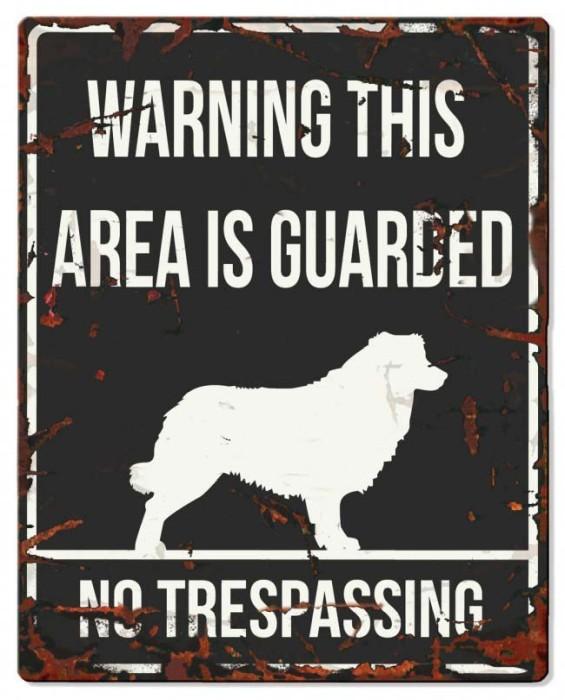 Skylt Warning This Area Is Guarded (Olika raser)