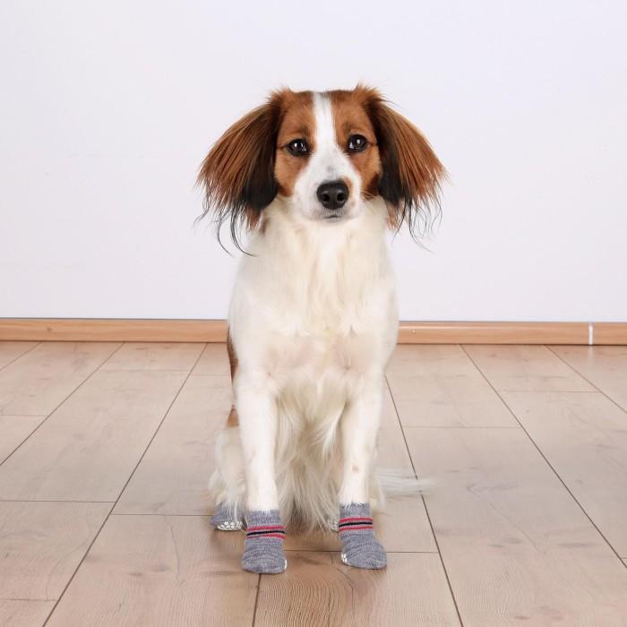 Trixie Hundsocka Non-Slip 2-pack