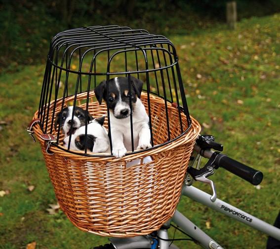 Trixie Cykelkorg för hundar 44 x 48 x 33cm